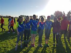 Ard Scoil Shines at County Championships
