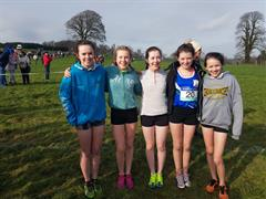 Three Ard Scoil na nDéise Teams Qualify for the All Ireland Cross Country Championships
